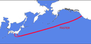 """Google Teams With Asian Telecoms For """"Faster"""" Undersea Cable"""
