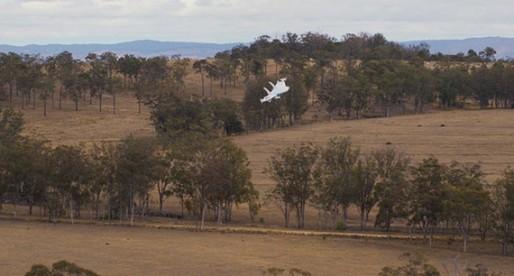 Unveiling  Google's Secret Drone-Delivery Program
