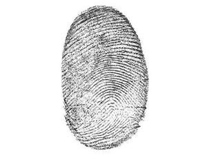 Could Fingerprints Possibly Reveal Drug Use?