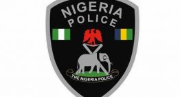 Unified Database Uncovers Over 80,000 Ghost Workers In The Nigeria Police Force