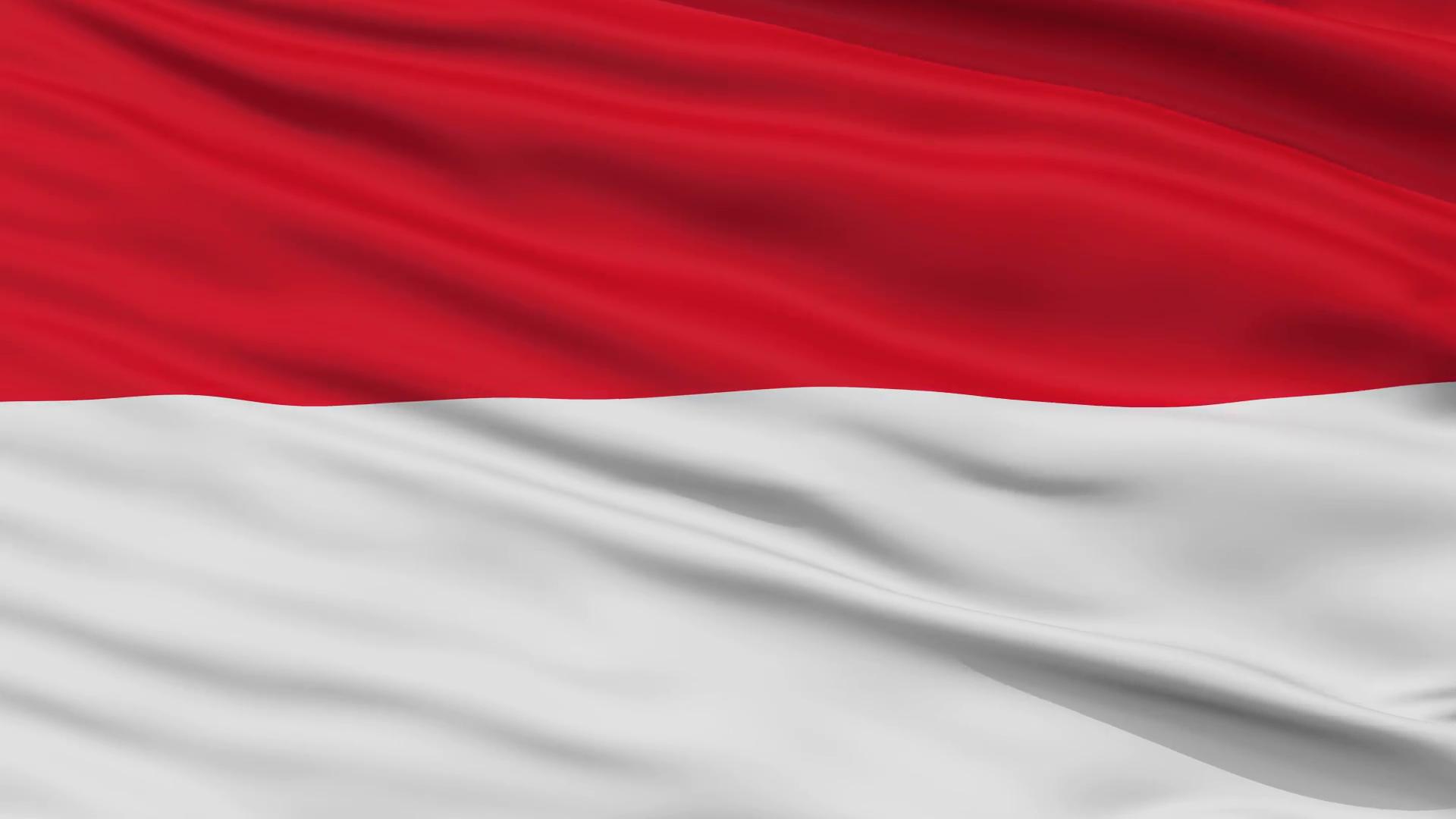 Indonesia Flag Techbooky