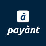 Kaduna Based Fintech Startup, Payant Crosses ₦1 billion Transactional Milestone