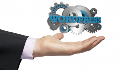 Best Tips To Create An Online Marketplace Using WordPress