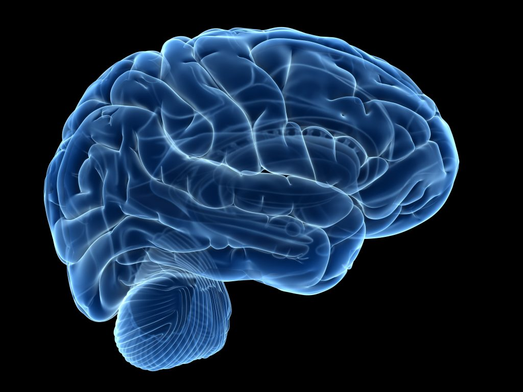 Neuralink To Start Equipping Human Brains With Faster Input and Output