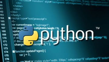 Explainer: The Ways Python Development Can Benefit Your Business