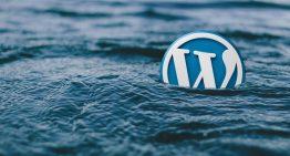 5 WordPress Database Plugins for Managing Your Site's Data