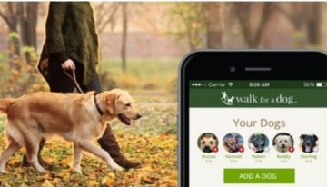 Here Are 5 Must Have Apps For Dog Owners